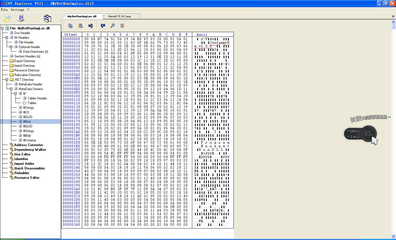 CFF_Explorer1.PNG